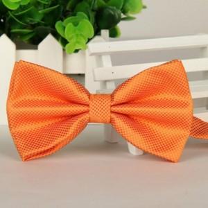 Бабочка жениха оранжевая