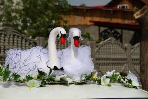 Лебеди на крышу